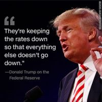 Congress, Donald Trump and The Fed Are Creating the Biggest Economic Bubble in World History.