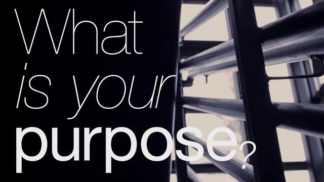 what u2019s your purpose    thyblackman