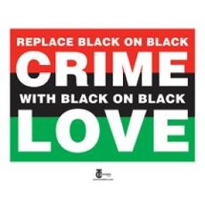 Black on black crime pics 23