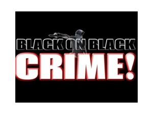black-on-black-crime-2015-is-real