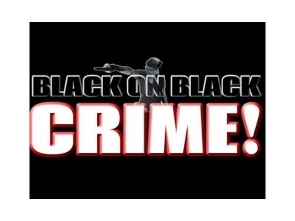 Black on black crime pics 37