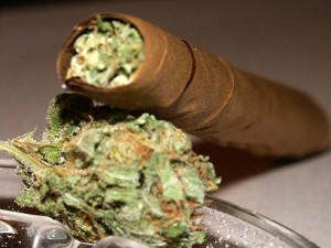 Why African Americans Smoke Ole Weed: The Root of the Problem.