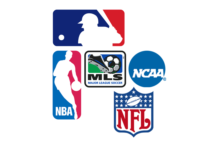 Professional Sports; NBA, NHL, NFL, MLB, etc...