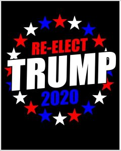 How We Reelect Donald Trump in 2020.