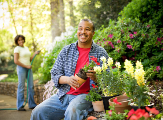 Ways to Benefit from Gardening for Your Mind and Body.