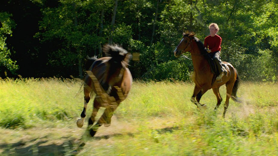 Film Review - Out Stealing Horses